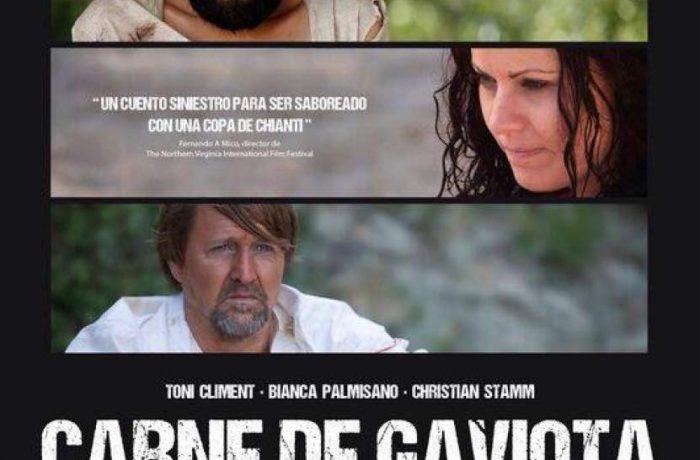 CARNE DE GAVIOTA (Seagull meat, 2015)