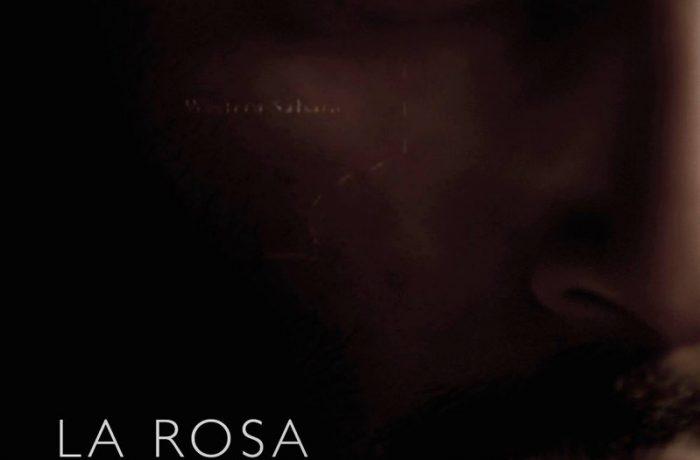 Desert rose (La rosa del desierto, 2014)