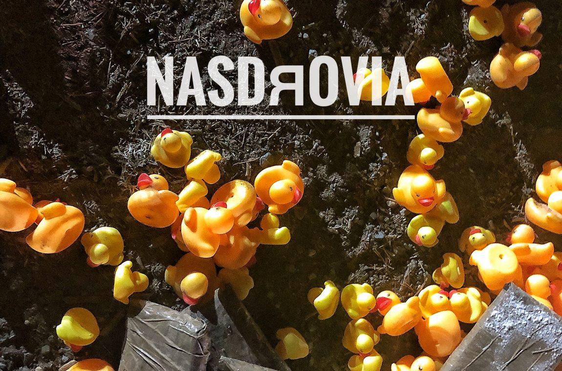 NASDЯOVIA.poster provisional
